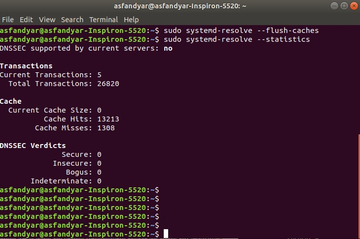 Flush DNS cache in systemd