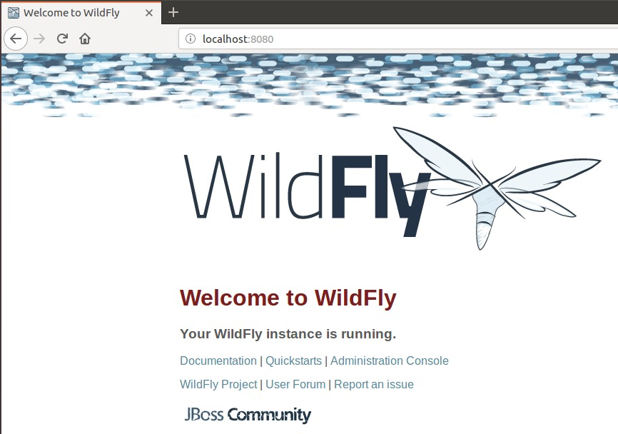 WildFly successfully installed