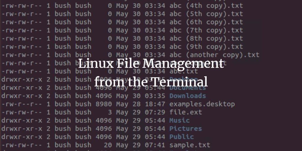Linux file management