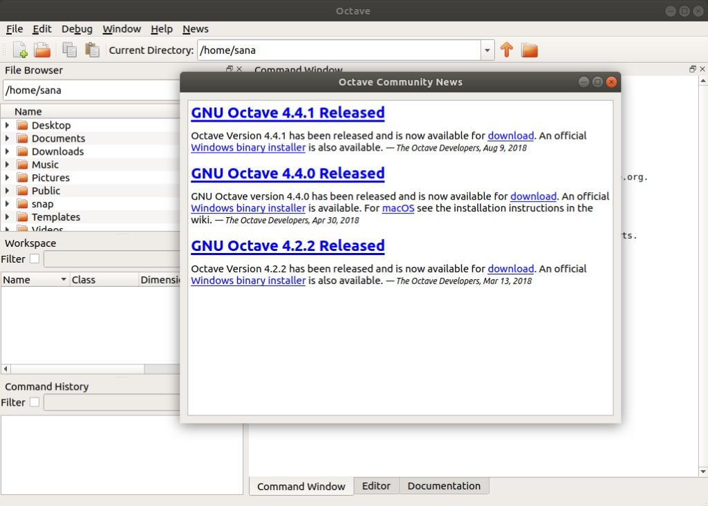 GNU Octave is running